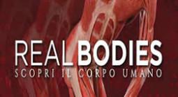 realbodies